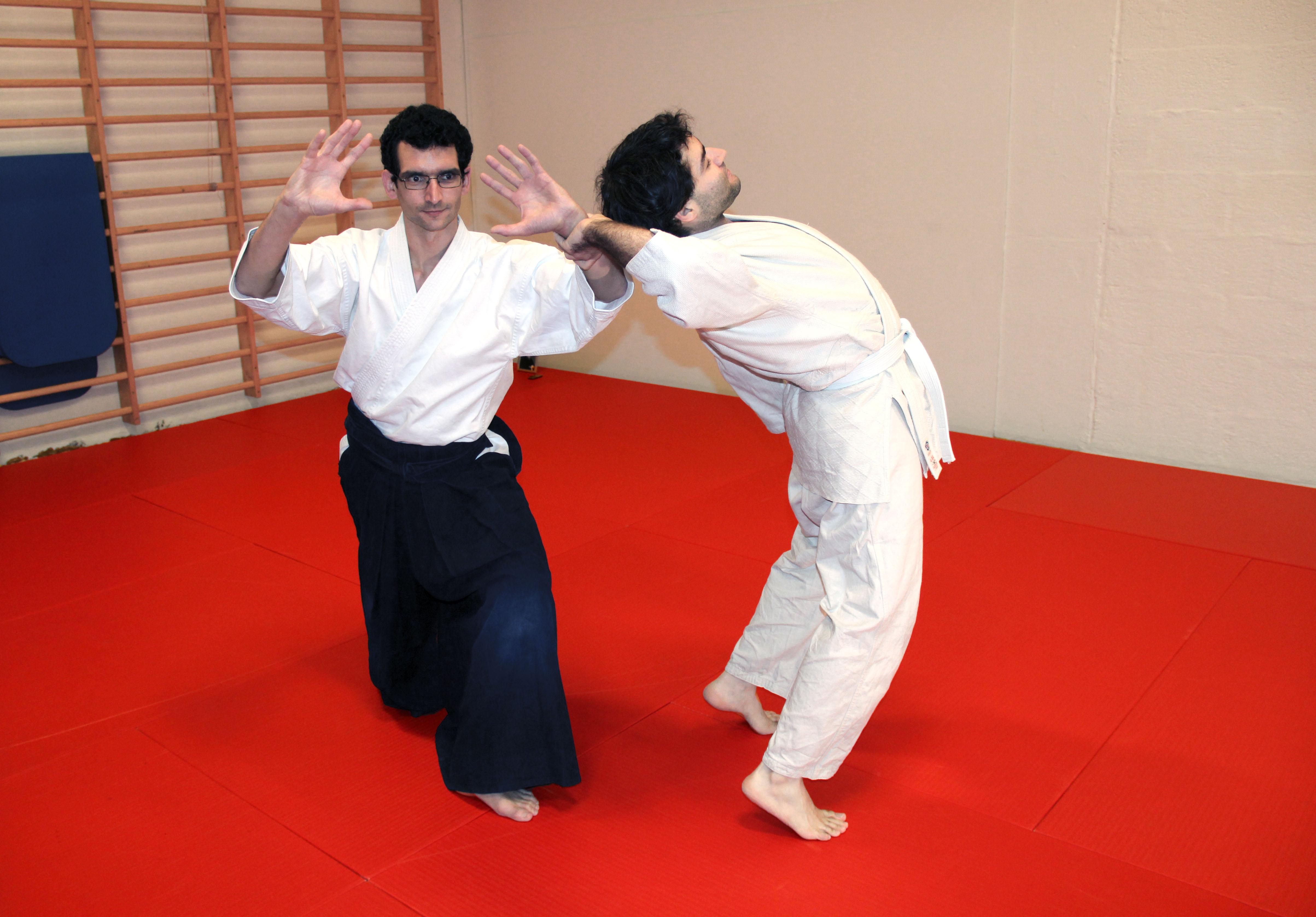BSI Aikido
